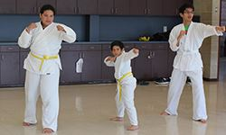 Kids performing tae kwon do moves
