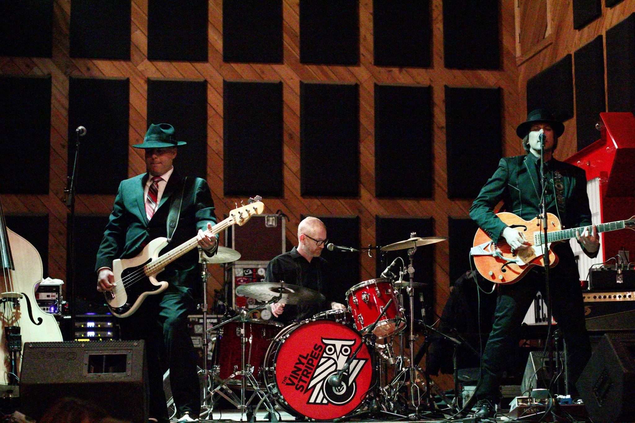 Vinyl Stripes Band image